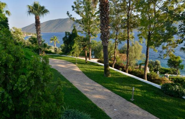 фото Bodrum Holiday Resort & Spa (ex. Majesty Club Hotel Belizia) изображение №6