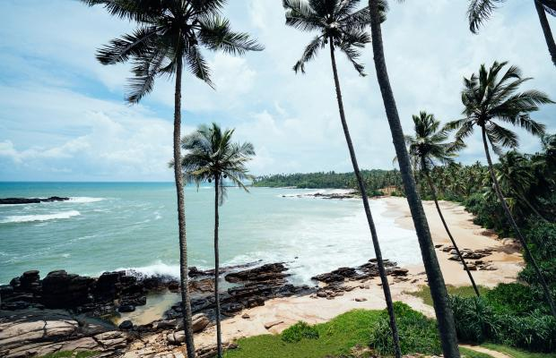 фотографии отеля Anantara Peace Haven Tangalle Resort изображение №11