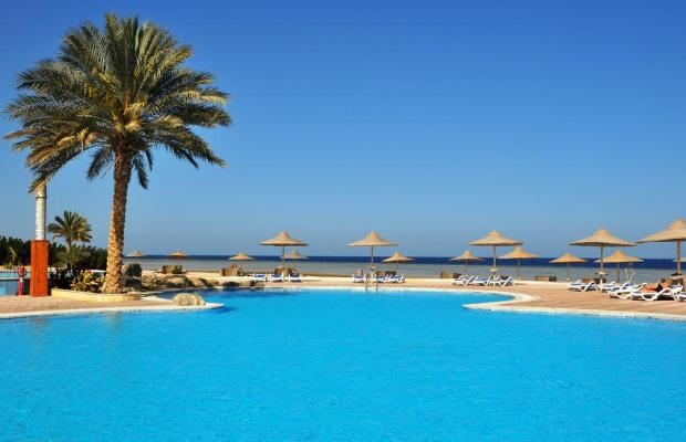 фото Paradise Club Shoni Bay Resort (ex. Royal Resort Marsa Alam) изображение №10