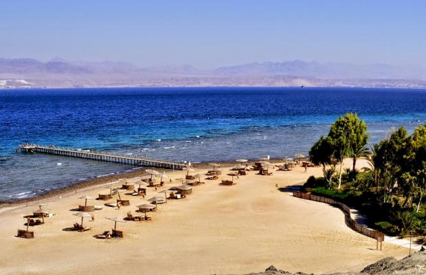 фотографии отеля Miramar Resort Taba Heights (ex. Hyatt Regency Taba Heights) изображение №47