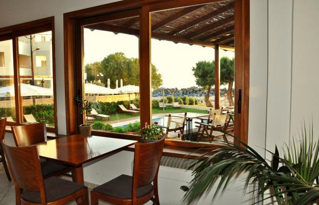 фотографии Aphrodite Beach Hotel изображение №4