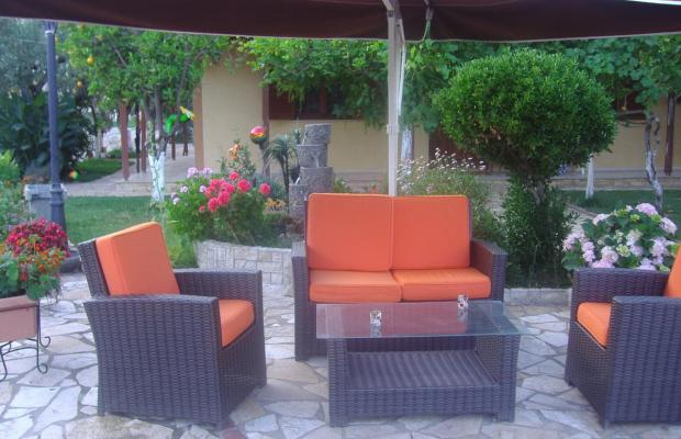 фото отеля Zorbas изображение №5