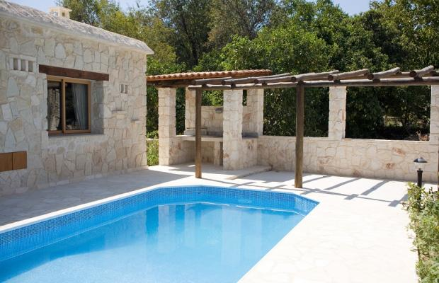 фотографии Villa Violaris изображение №16