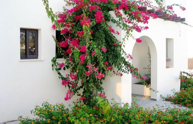 фотографии отеля Aura Holiday Villas изображение №7