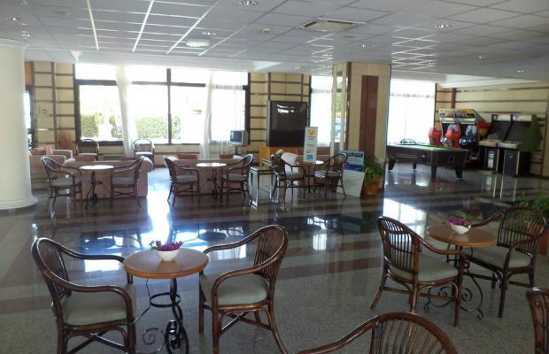фотографии отеля Tsokkos Gardens Hotel Apts изображение №11