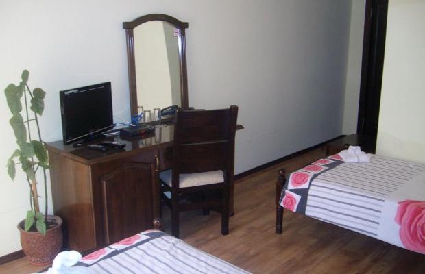 фотографии Kakadu (Какаду) изображение №12