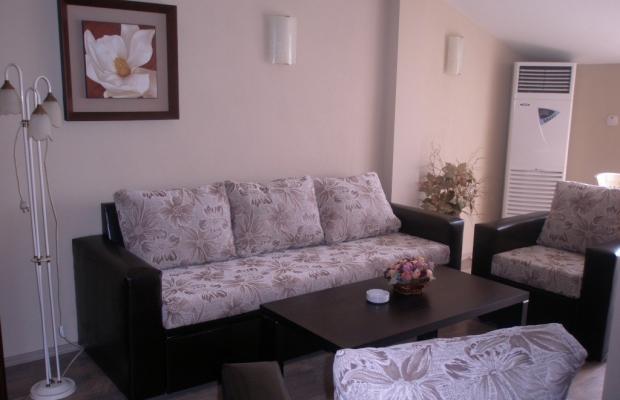 фото Magnolia (Магнолия) изображение №6
