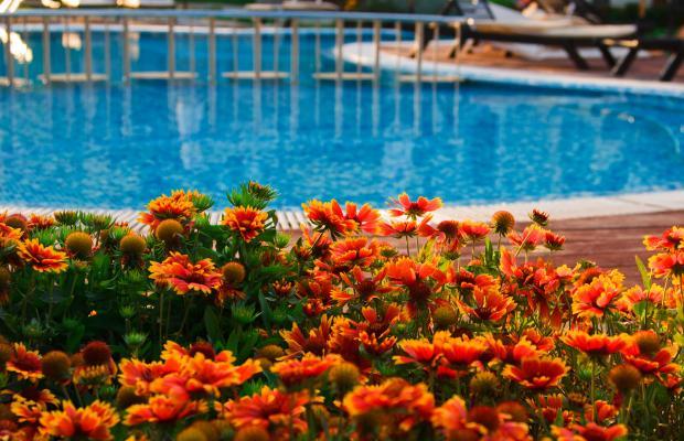 фото отеля Garden of Eden (Райский сад) изображение №33