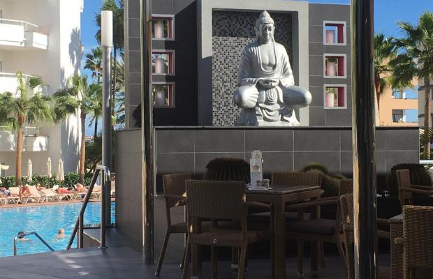 фото отеля Hotel Riu Don Miguel изображение №9