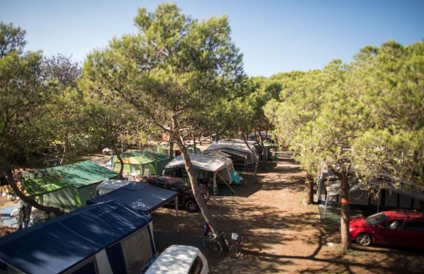 фотографии отеля Camping El Delfin Verde изображение №15