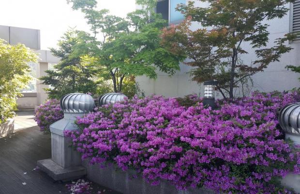 фото отеля Hyundai Residence изображение №9
