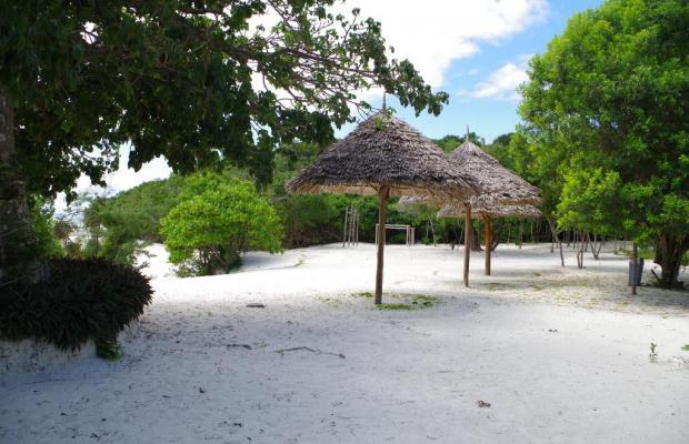 фотографии Ras Michamvi Beach Resort изображение №20