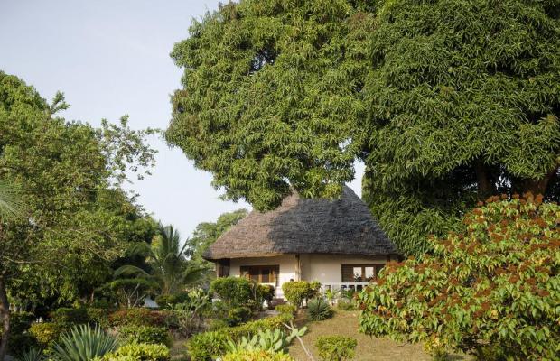фото отеля Chuini Zanzibar Beach Lodge изображение №9