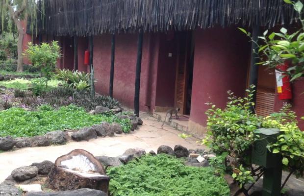 фото отеля Amboseli Serena Safari Lodge изображение №5
