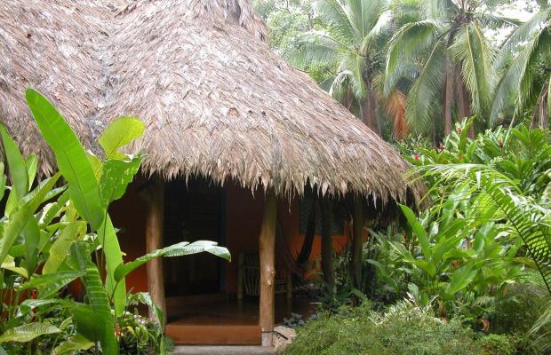 фото Cariblue Beach and Jungle Resort изображение №42