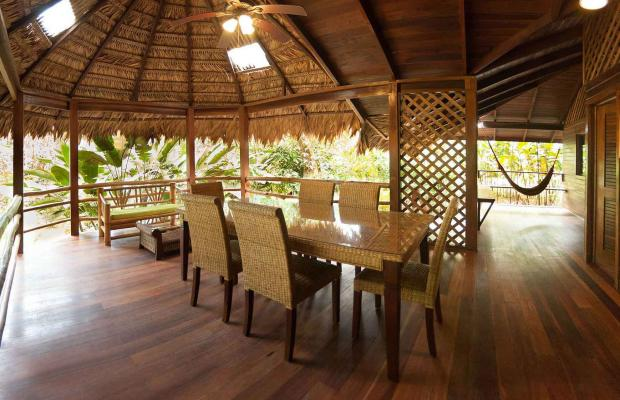 фото отеля Cariblue Beach and Jungle Resort изображение №21