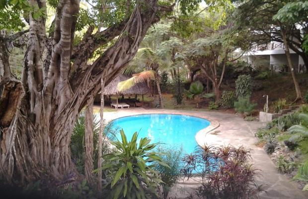 фото Driftwood Beach Club изображение №18