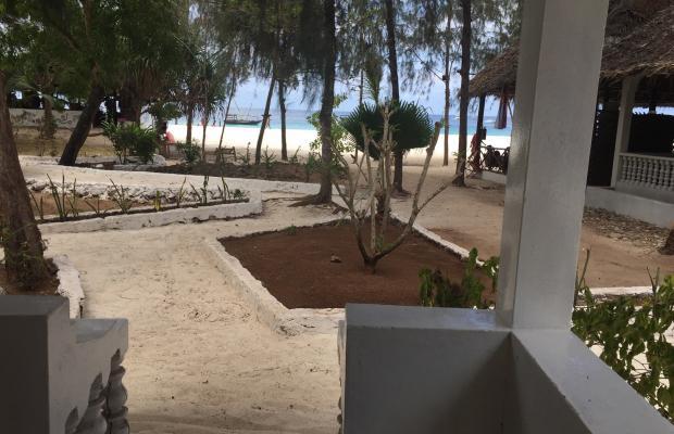 фотографии отеля The Nungwi Inn изображение №3