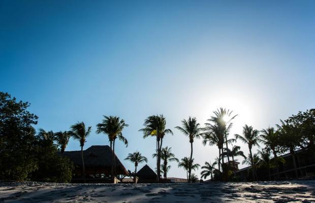 фото Flamingo Beach Resort изображение №18
