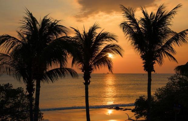 фото отеля Flamingo Beach Resort изображение №17