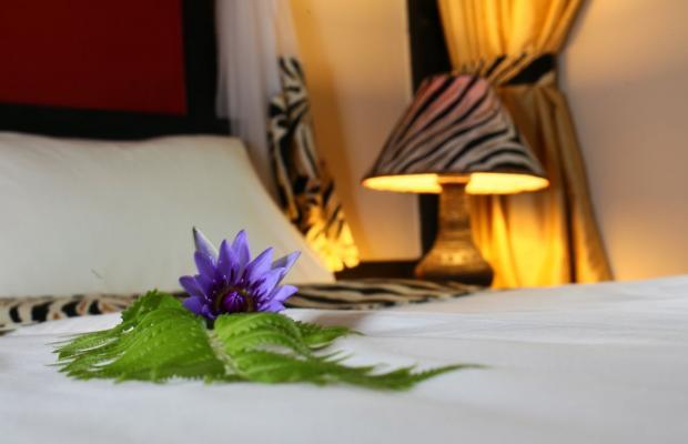 фотографии Shimba Rainforest Lodge изображение №12