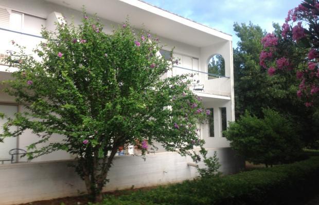 фотографии отеля Holidays in Evia изображение №3