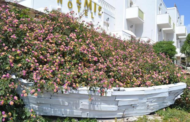 фотографии Artemis Hotel изображение №24