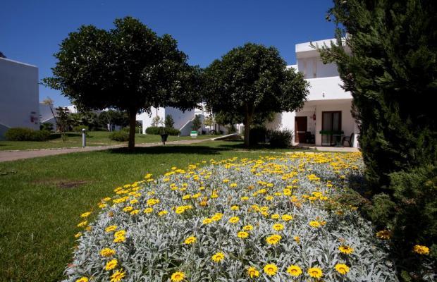 фотографии CDS Hotels Riva Marina Resort изображение №12
