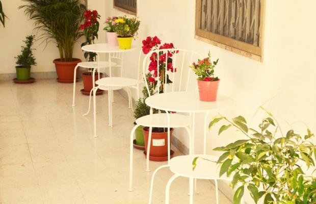 фото отеля Olive Tree Hostel изображение №13