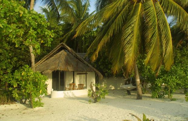 фотографии отеля Rihiveli by Castaway Hotels & Escapes изображение №15