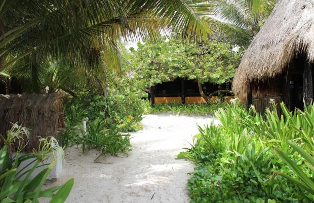 фотографии отеля Retiro Maya Tulum (ех. Retiro Maya Eco-Hotel and Retreats) изображение №23