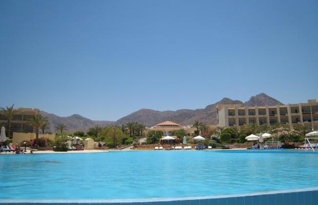 фотографии отеля Dessole Holiday Taba Resort (ех. Holiday Resort Taba) изображение №19
