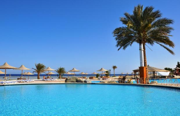 фото отеля Paradise Club Shoni Bay Resort (ex. Royal Resort Marsa Alam) изображение №9