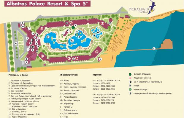 фото отеля Albatros Palace Resort (ex. Albatros Club) изображение №17
