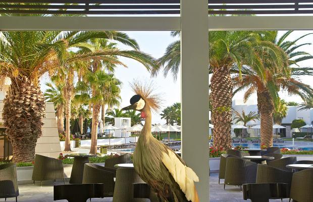фотографии отеля Grecotel Creta Palace изображение №23