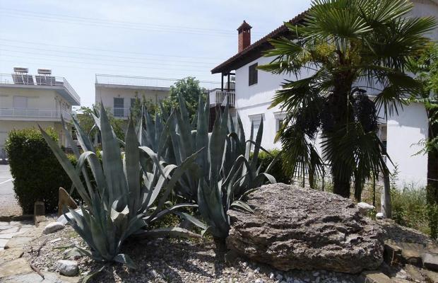 фото отеля Dias Hotel Makrigialos изображение №9