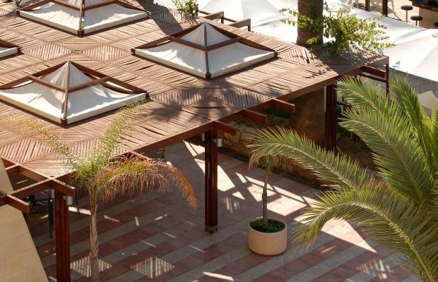 фотографии Palm Beach Hotel & Bungalows изображение №12