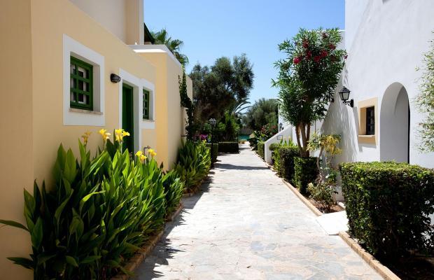 фотографии отеля Kefalos Beach Tourist Village изображение №19