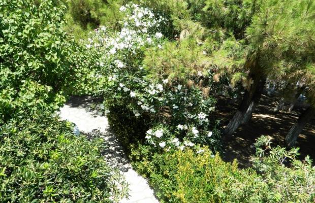 фотографии отеля Glicorisa Beach изображение №55