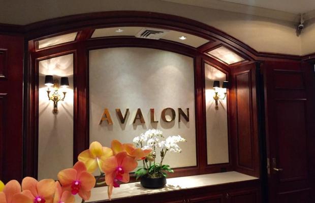фото Avalon изображение №2