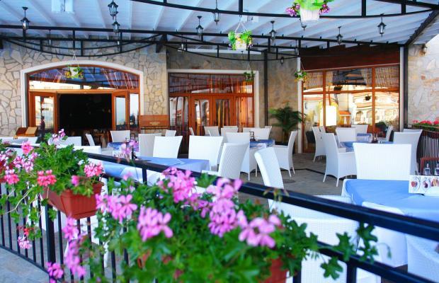 фотографии The Vineyards Resort изображение №16