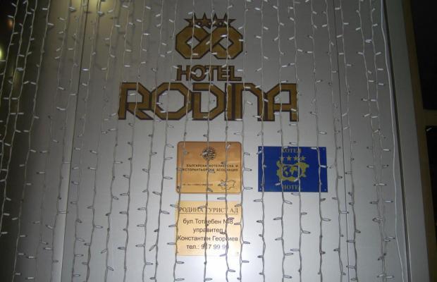 фото Rodina изображение №14