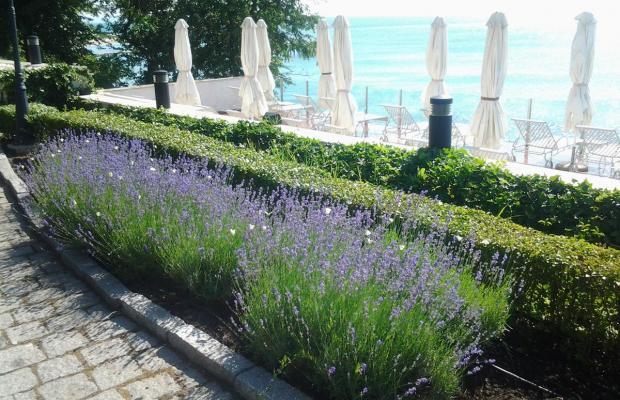 фото Riviera Oasis изображение №18