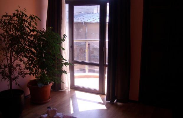 фотографии Kakadu (Какаду) изображение №20