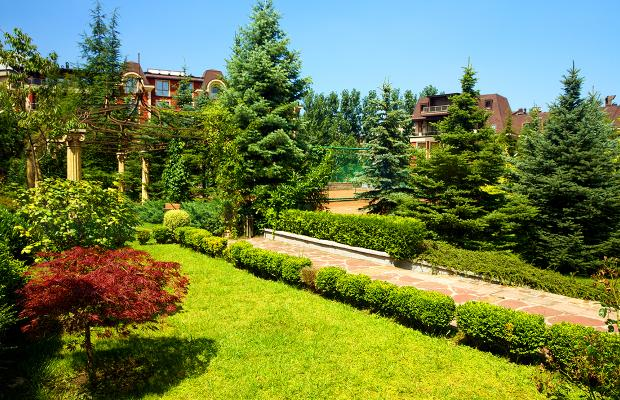 фото отеля Maxi Park Hotel & Spa (ex. Olymp Park Hotel & Spa)  изображение №13