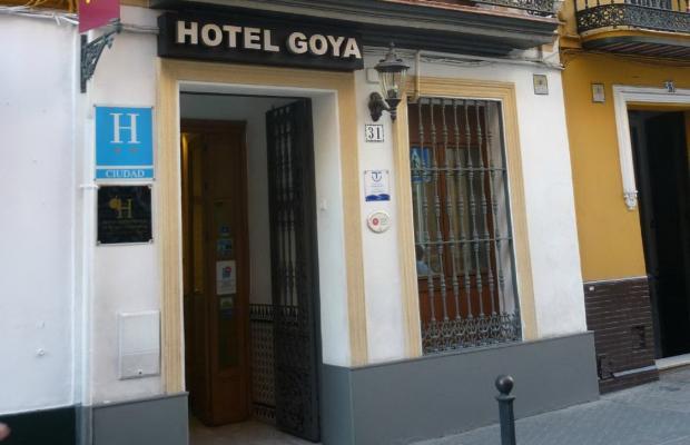 фотографии Goya изображение №4