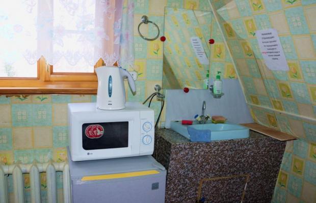 фото Жемчужина Камчатки (Zhemchuizhina Kamchatki) изображение №6