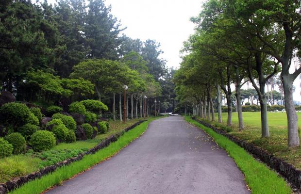 фотографии отеля Kal Seogwipo изображение №35