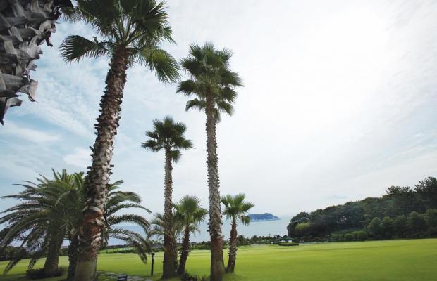 фото отеля Kal Seogwipo изображение №33