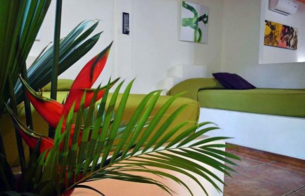 фотографии отеля Cariblue Beach and Jungle Resort изображение №83